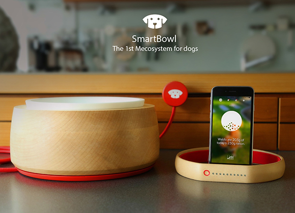 Smart-Bowl_cropped_600